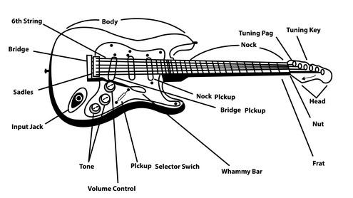 L'anatomie de la guitare